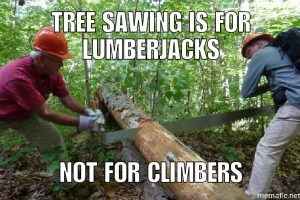 Tree Sawing is for Lumberjacks, not for Climbers